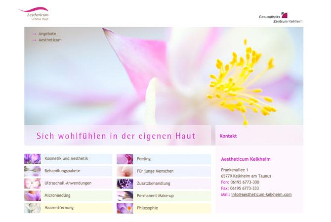 Screenshot Aestheticum